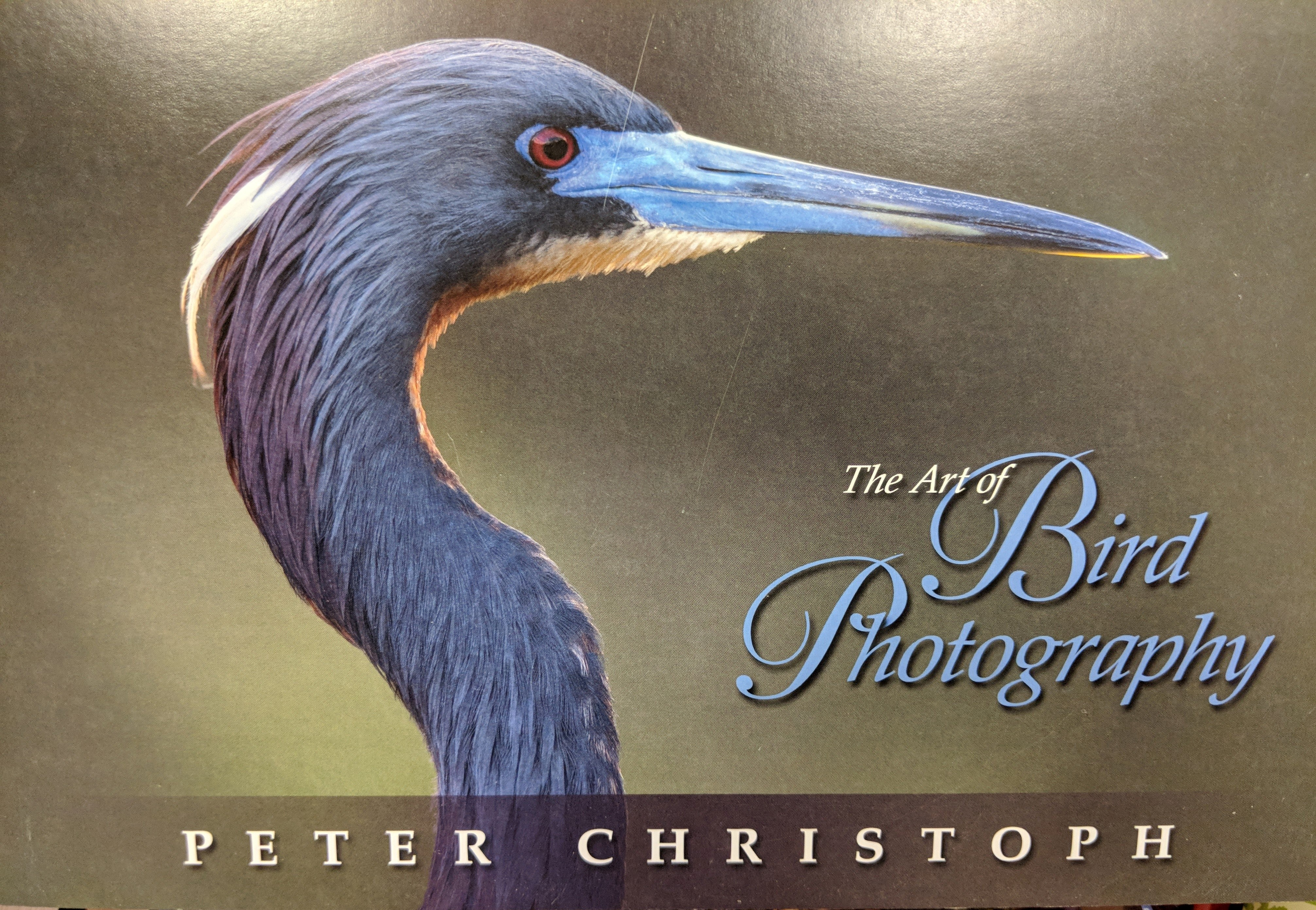 Peter Christoph's new book, The Art of Bird Photography